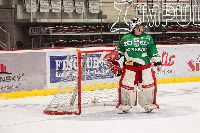 hokejový brankář