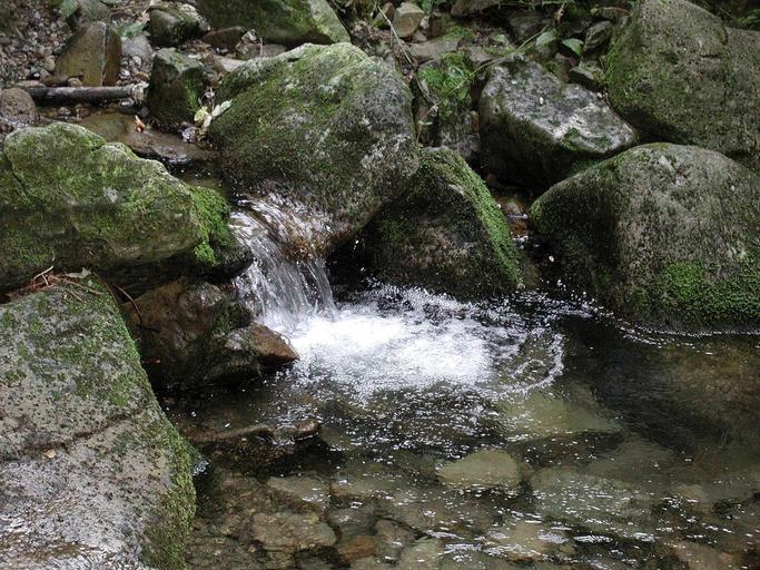 Voda je živel